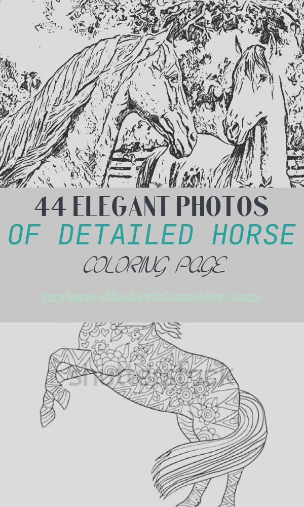 Detailed Horse Coloring Page Beautiful Christian In My Treasure Box Detailed Coloring