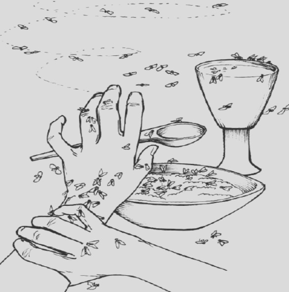 10 plagues of egypt coloring pages