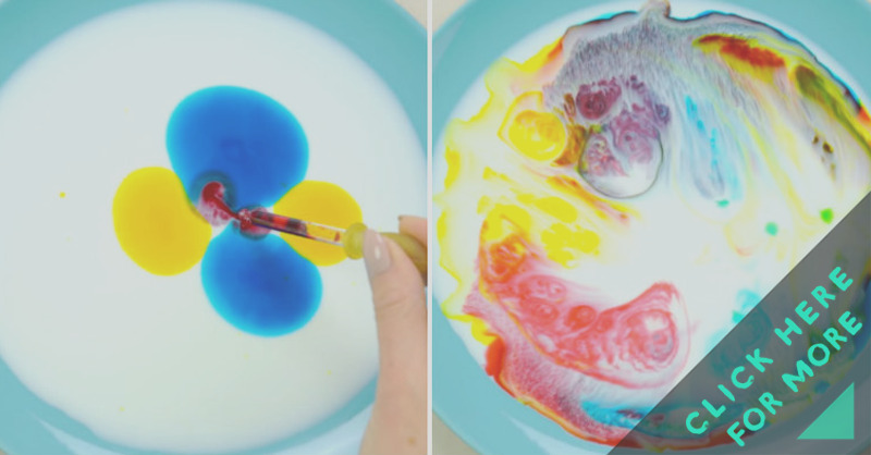 dish soap and food coloring experiment
