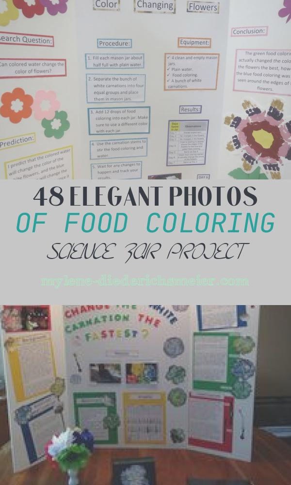 Food Coloring Science Fair Project Luxury Food Coloring Science Fair Projects