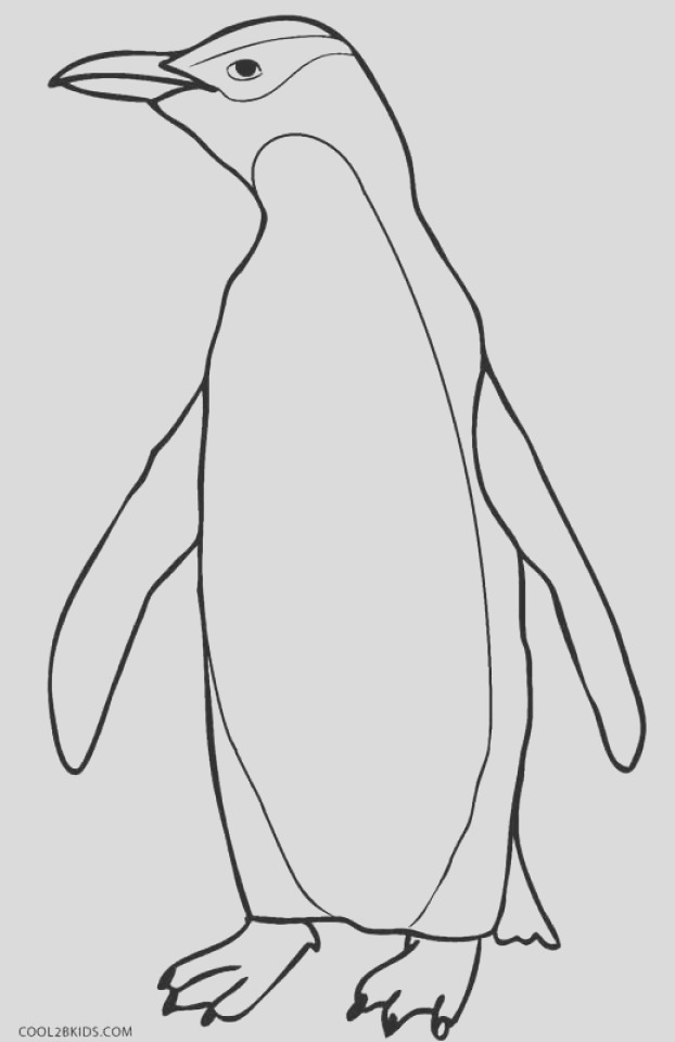 penguin coloring pages free to print
