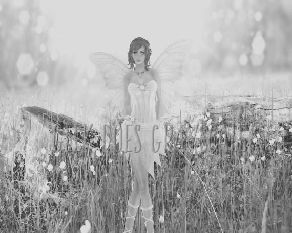 grayscale fairy by stump grayscale