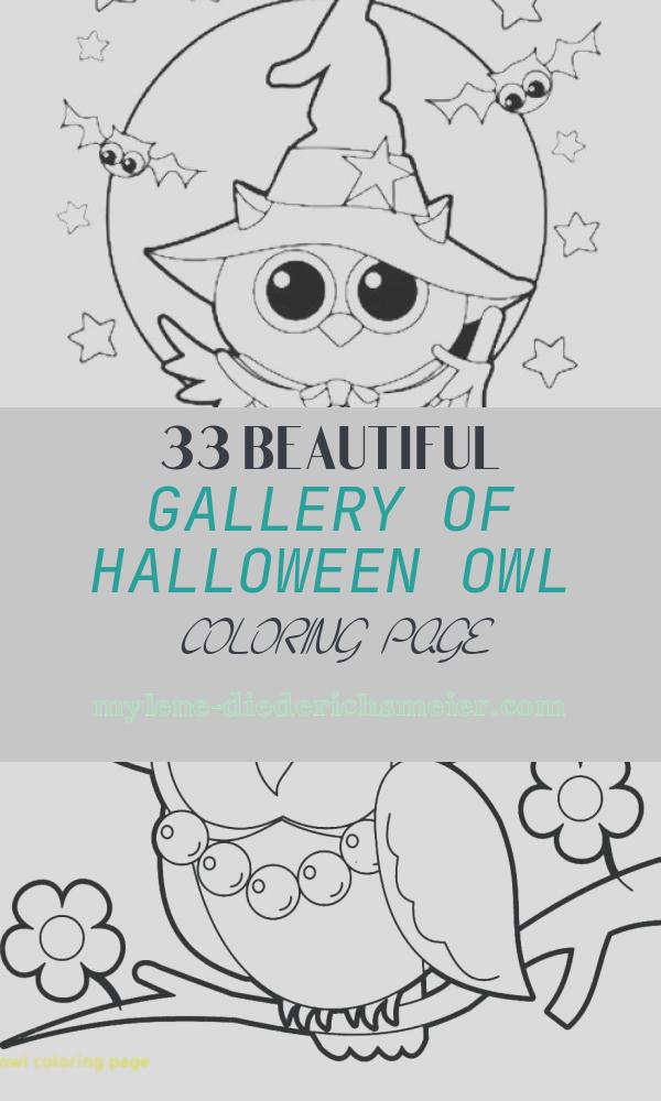 Halloween Owl Coloring Page Best Of Halloween Owl Witch Coloring Page