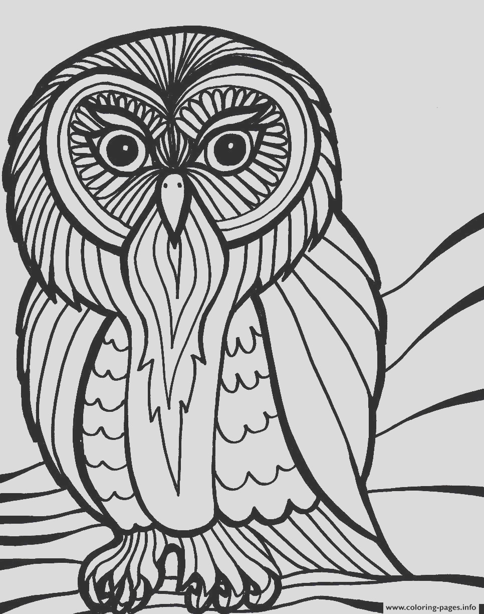 scary halloween owl s8616 printable coloring pages book 6244