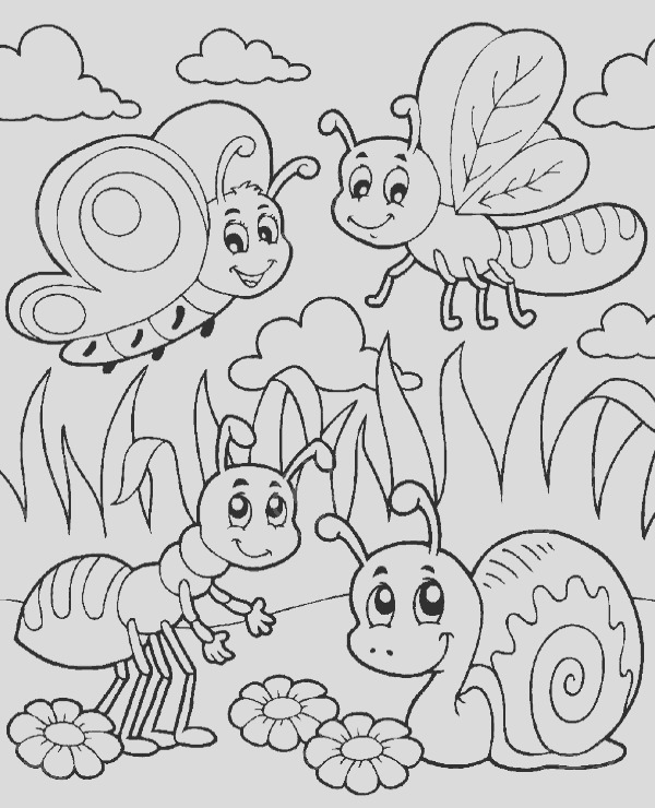insects coloring page 22
