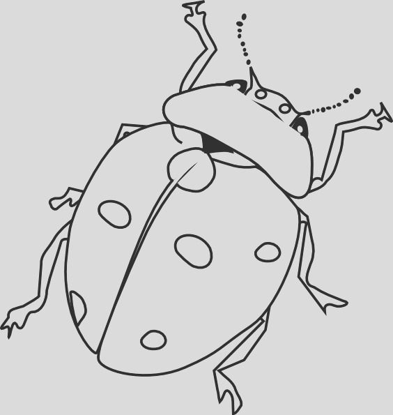insect coloring pages 2