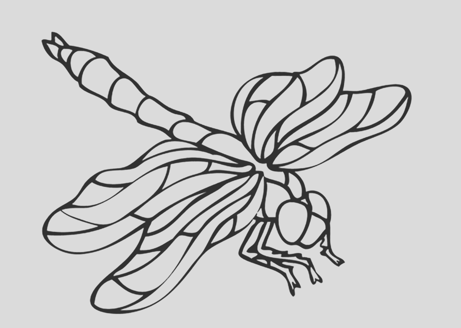 image=insects coloring pages for children insects 3
