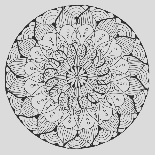 new coloring page in shop