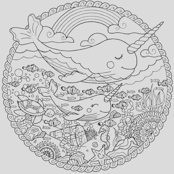 narwhal coloring page for adults sea