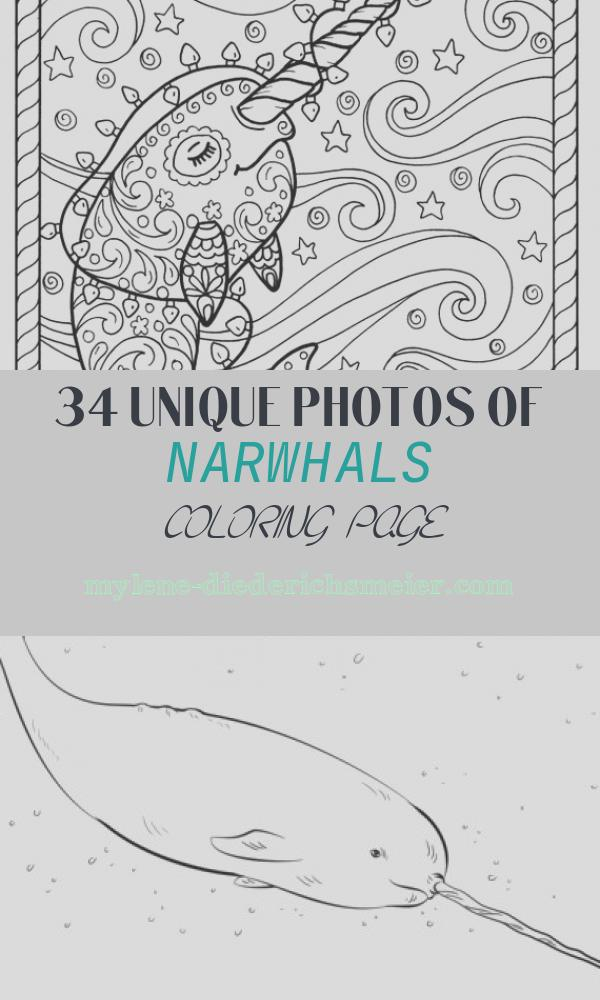 Narwhals Coloring Page Elegant Narwhal Christmas Coloring Pages Adult Coloring Books Digi