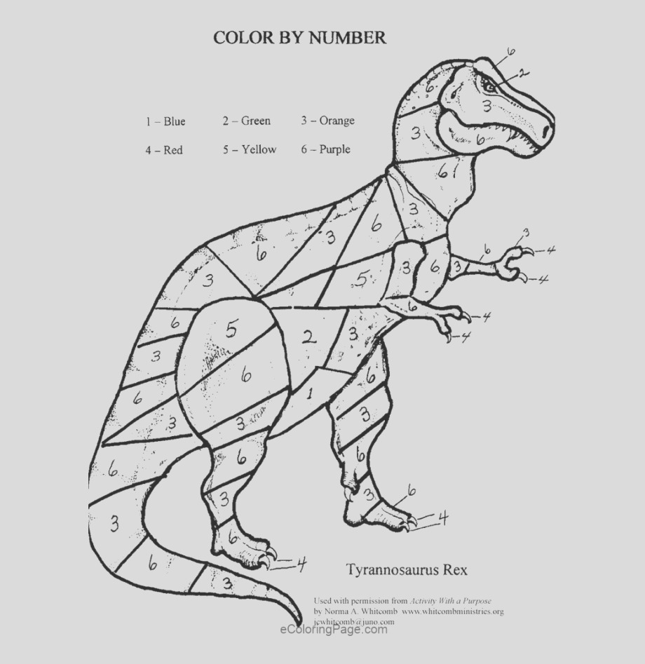 310 12 color by numbers coloring pages for kids