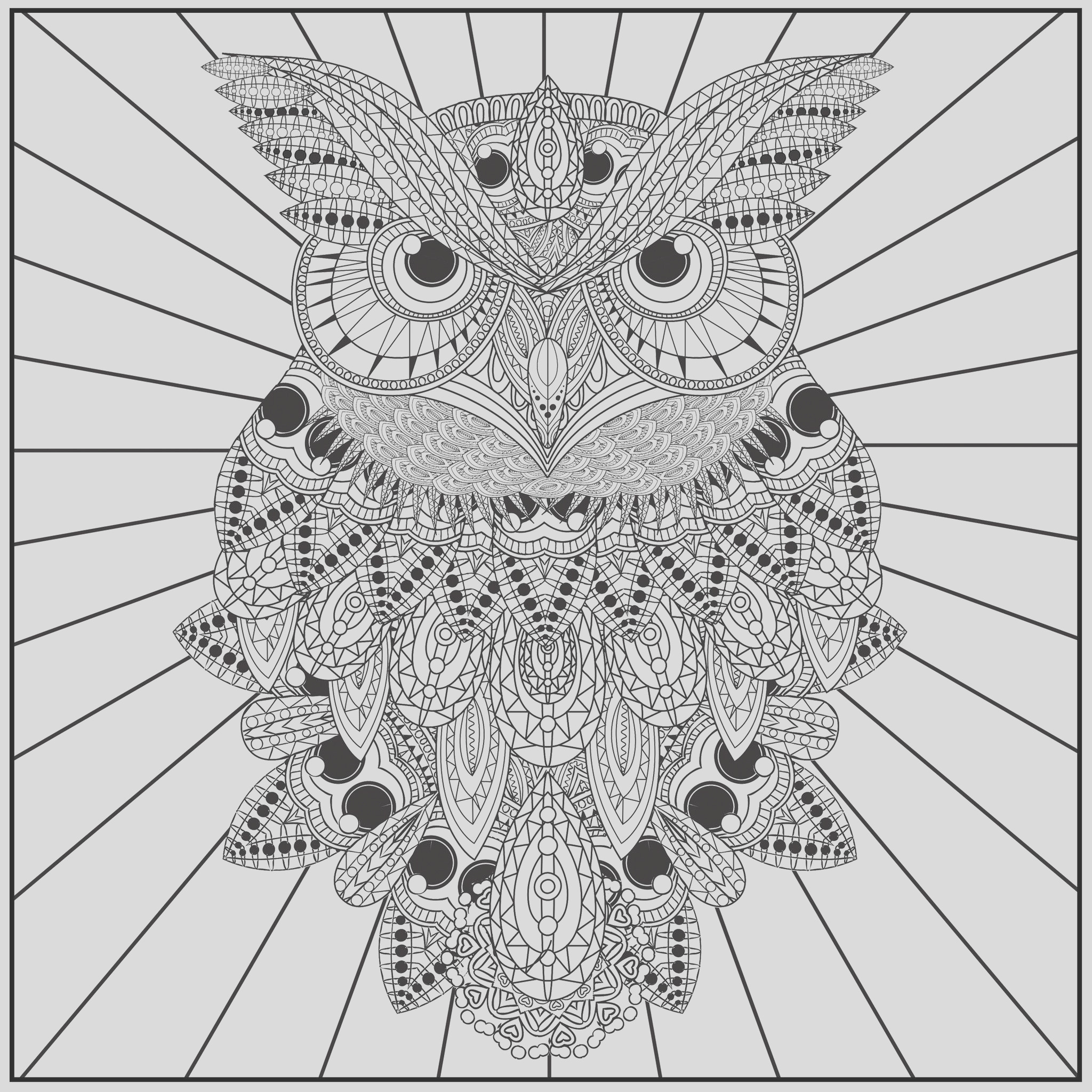 free owl adult coloring pages to print