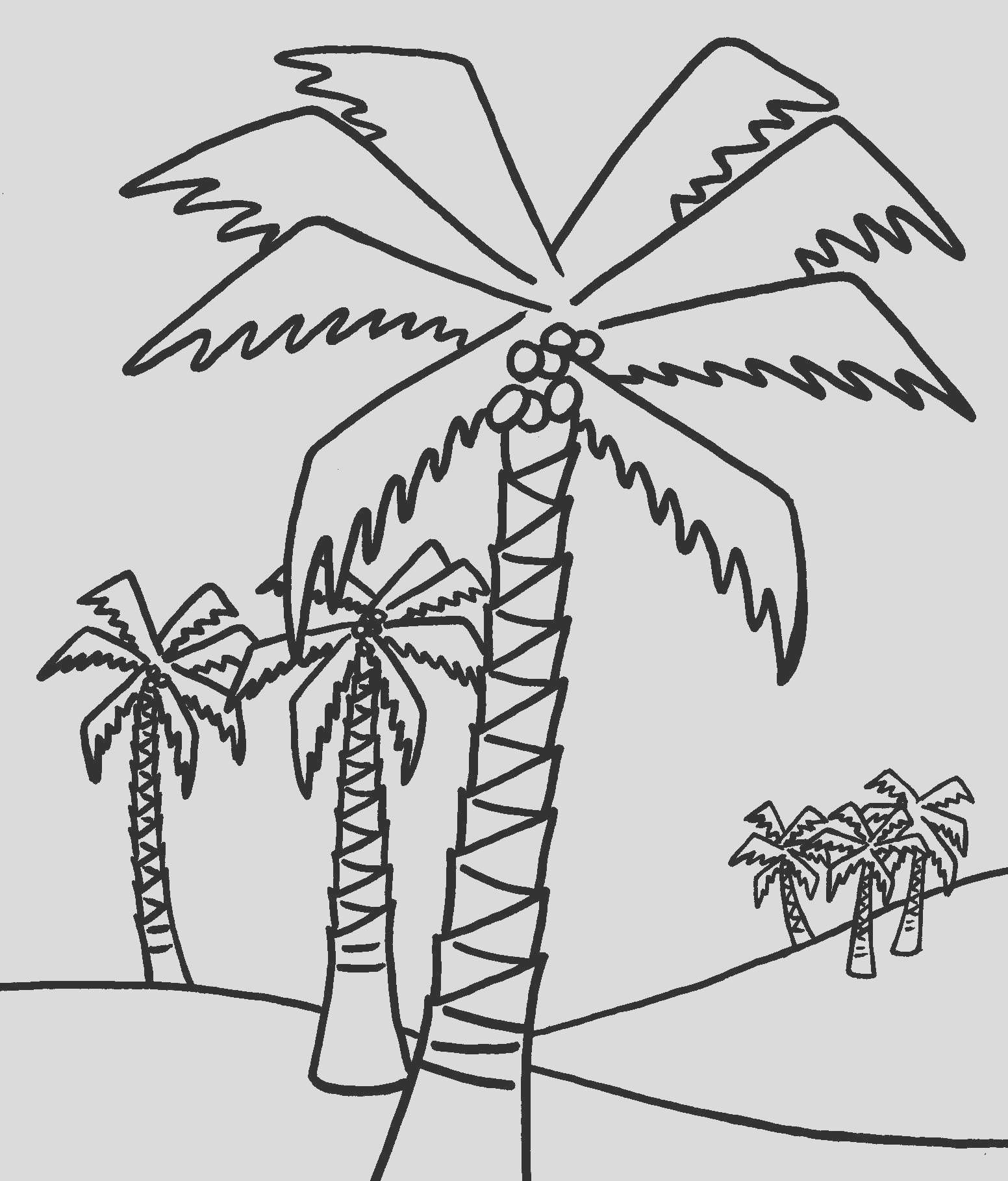 palm tree coloring pages for kids