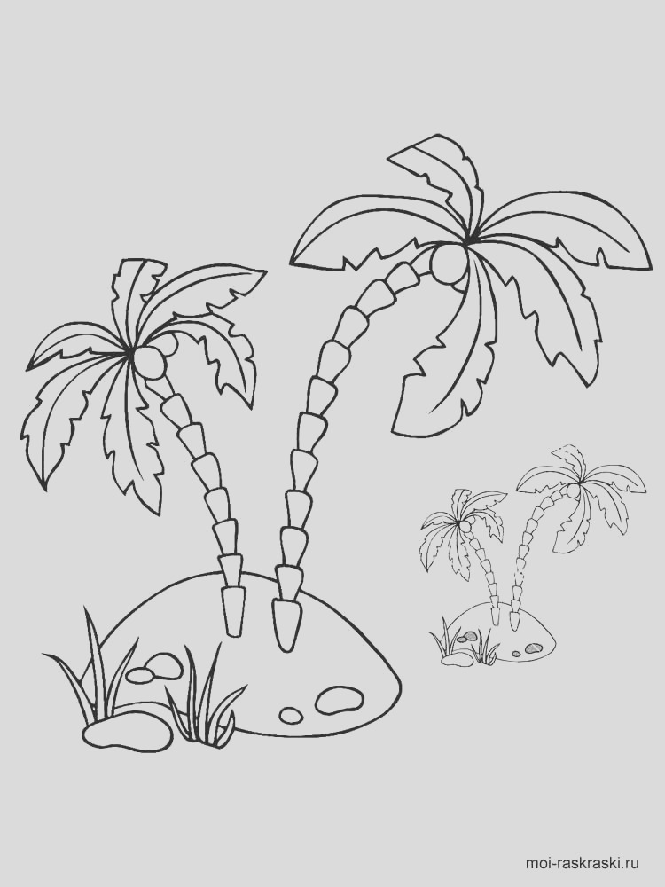 palm tree coloring pages