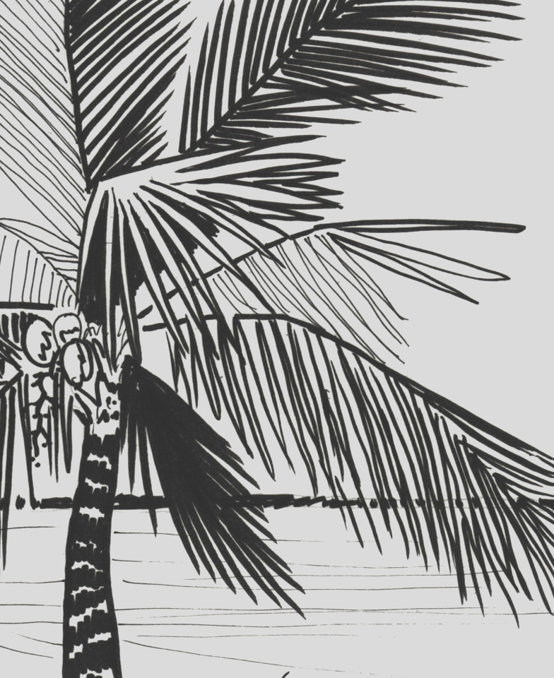 palm tree coloring page embroidery