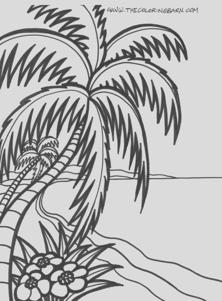 palm tree coloring pages to print
