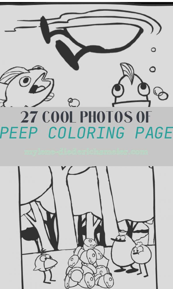 Peep Coloring Page Beautiful Home Science and Math Activities and Videos for Preschool