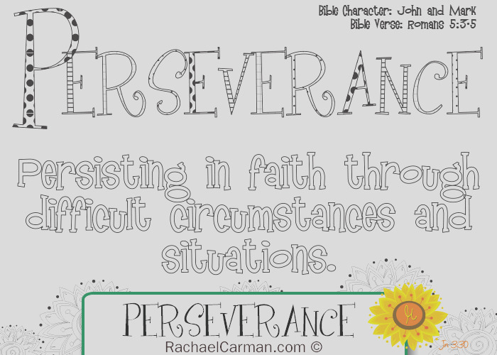 character quality perseverance