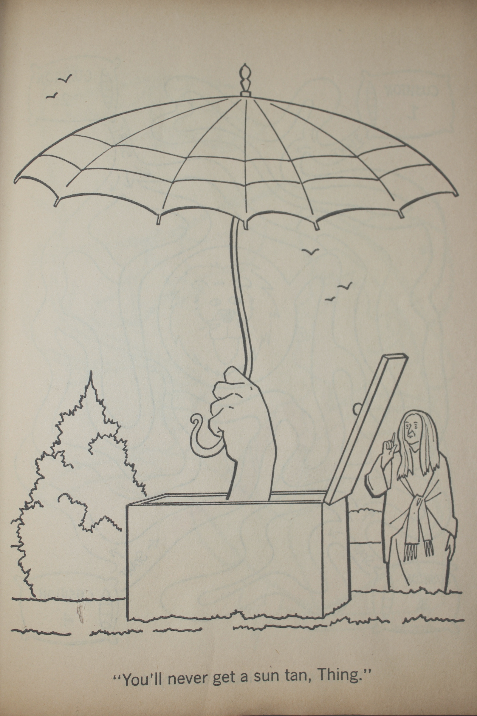 the addams family a coloring book 1965