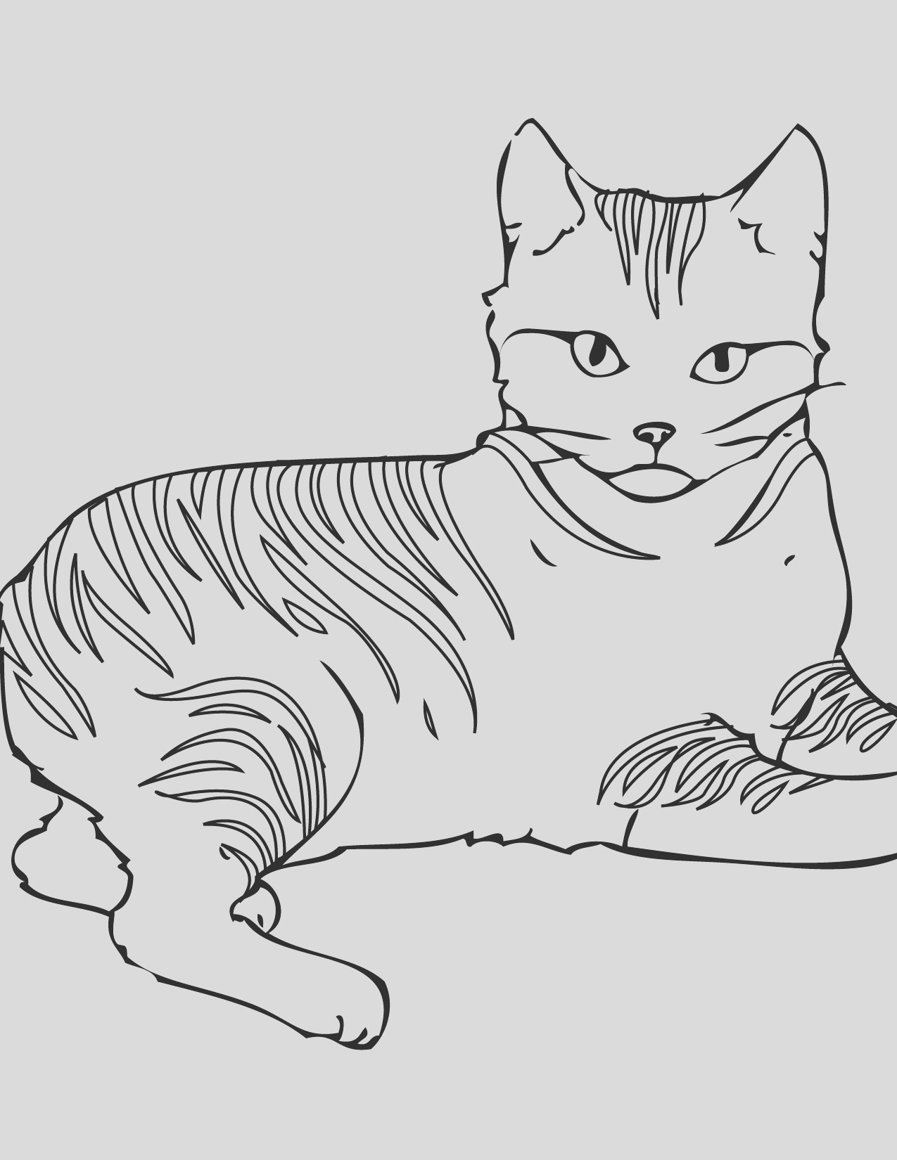 realistic tabby cat coloring pages