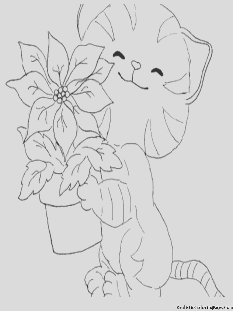 realistic coloring pages of cats m=0