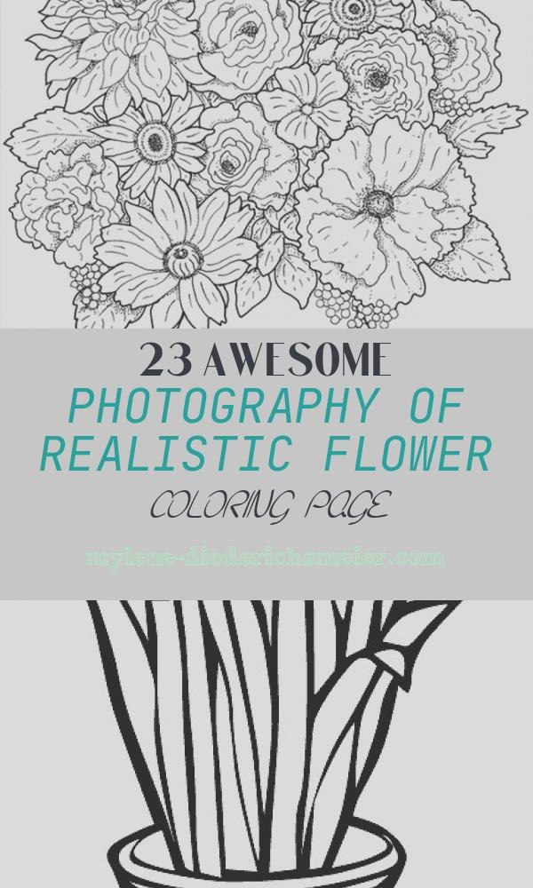 Realistic Flower Coloring Page Beautiful Realistic Flowers Drawing at Getdrawings