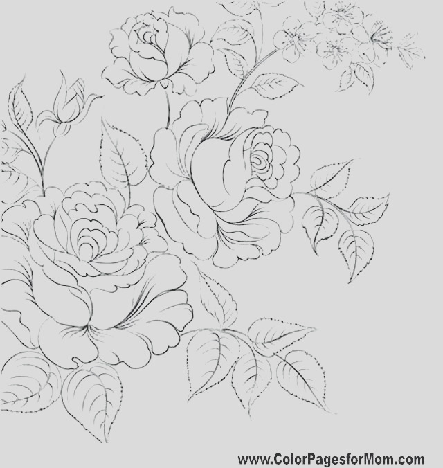 realistic flower drawing