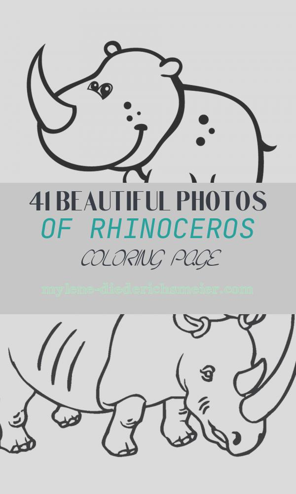 Rhinoceros Coloring Page Lovely Free Printable Rhinoceros Coloring Pages for Kids