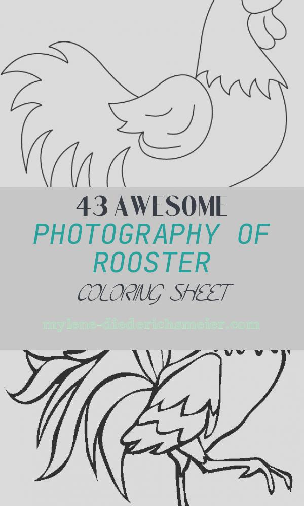 Rooster Coloring Sheet Best Of Funny Rooster Coloring Pages for Kids