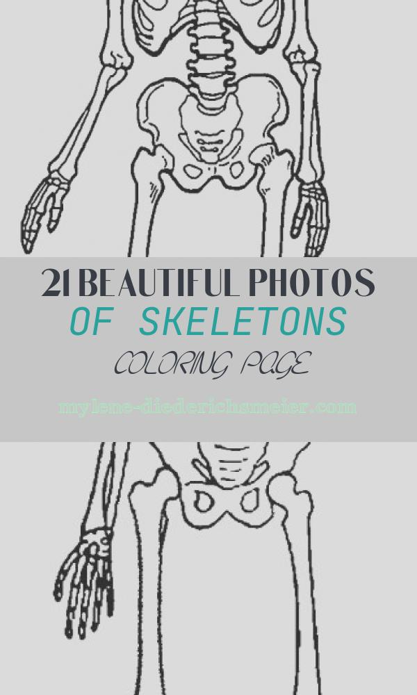 Skeletons Coloring Page Luxury Printable Skeleton Coloring Pages for Kids