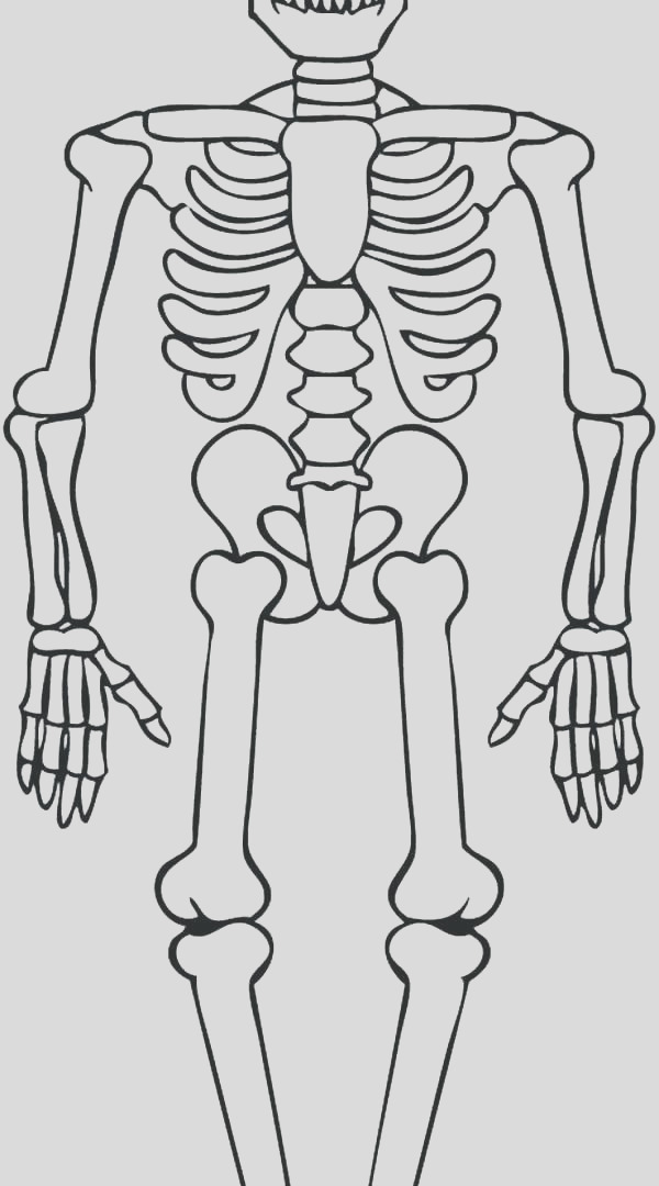 human skeleton coloring pages