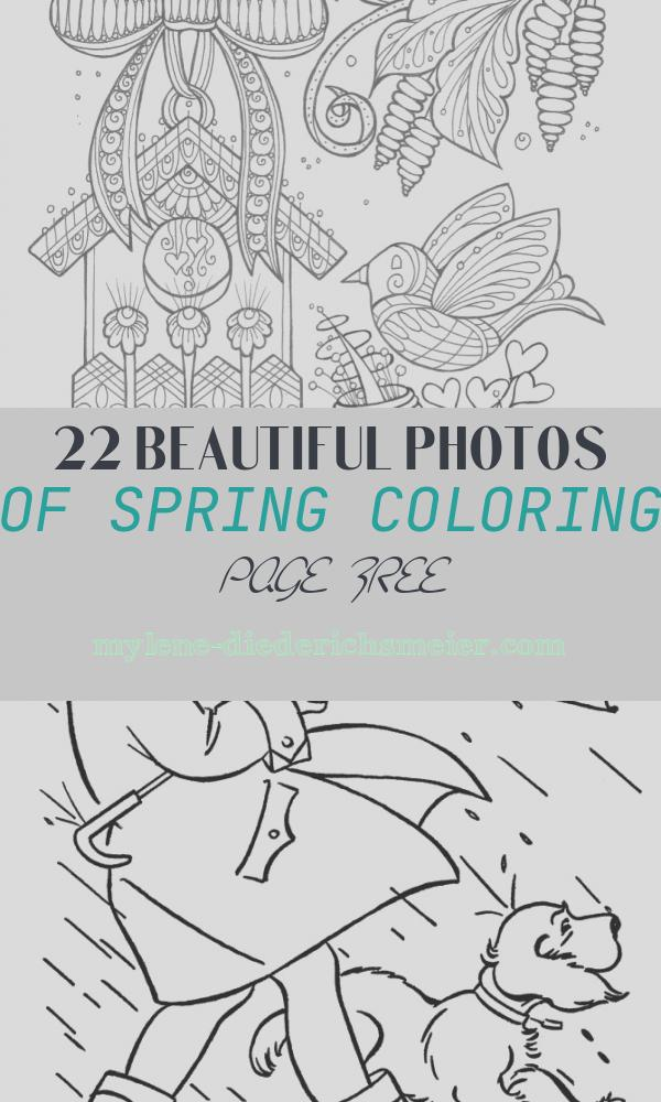 Spring Coloring Page Free Luxury Birds and Flowers Spring Coloring Page