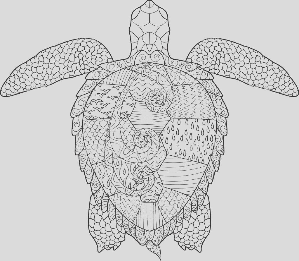 adult antistress coloring page with turtle gm