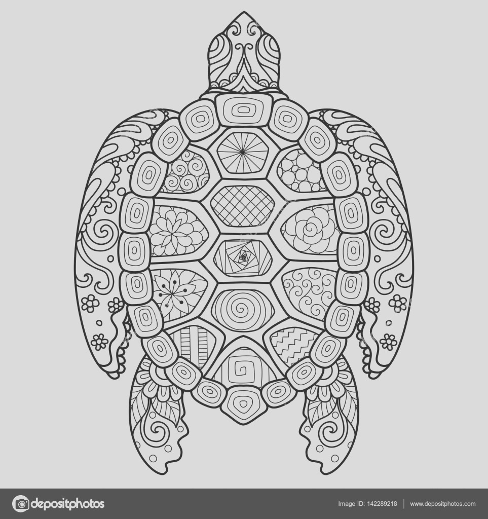 stock illustration zendoodle stylize of beautiful turtle