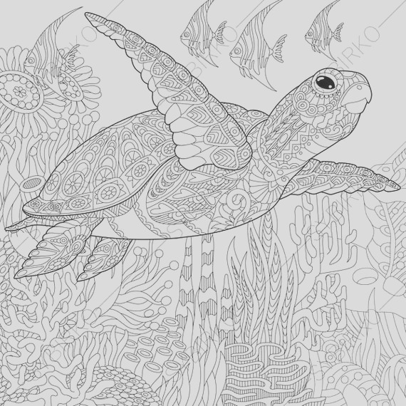 adult coloring page sea turtle zentangle