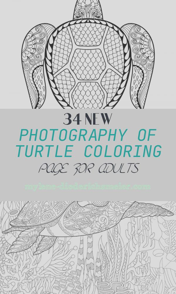 Turtle Coloring Page for Adults Unique Hand Drawn Sea Turtle for Adult Coloring Pages In Vector Image