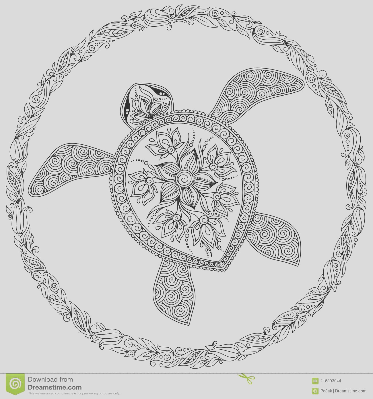 vector illustration sea turtle coloring book pages coloring book adults coloring page turtle different ornaments image