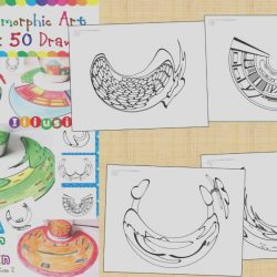 Anamorphic Coloring Book Awesome Mirror Anamorphic Art Coloring Book 50 Drawings