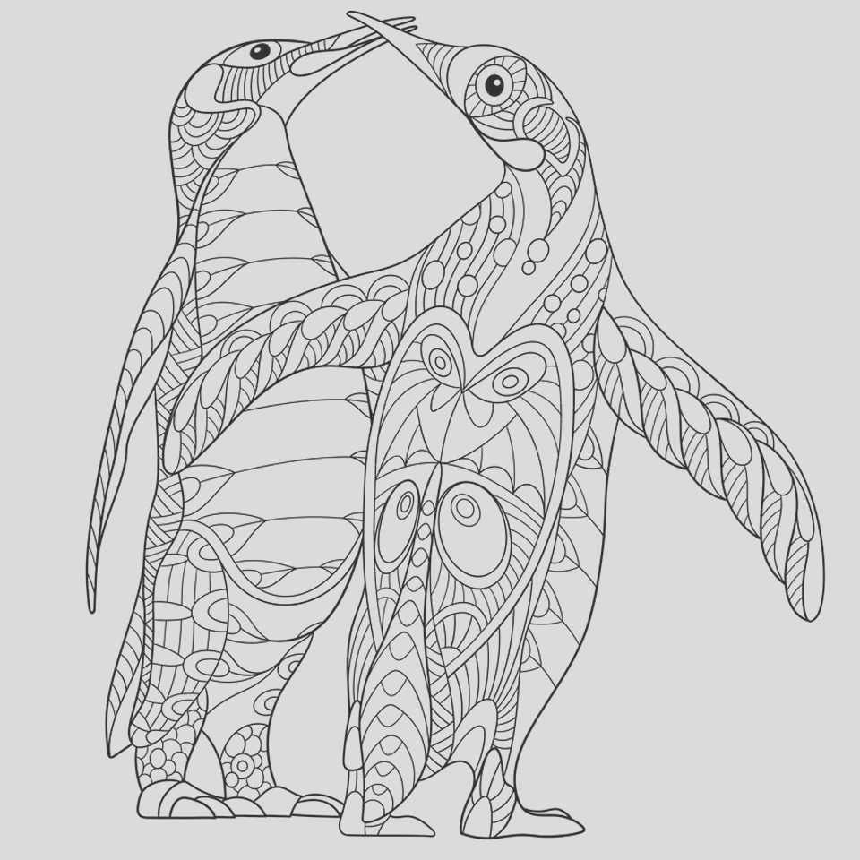 penguin coloring pages for adults to print out
