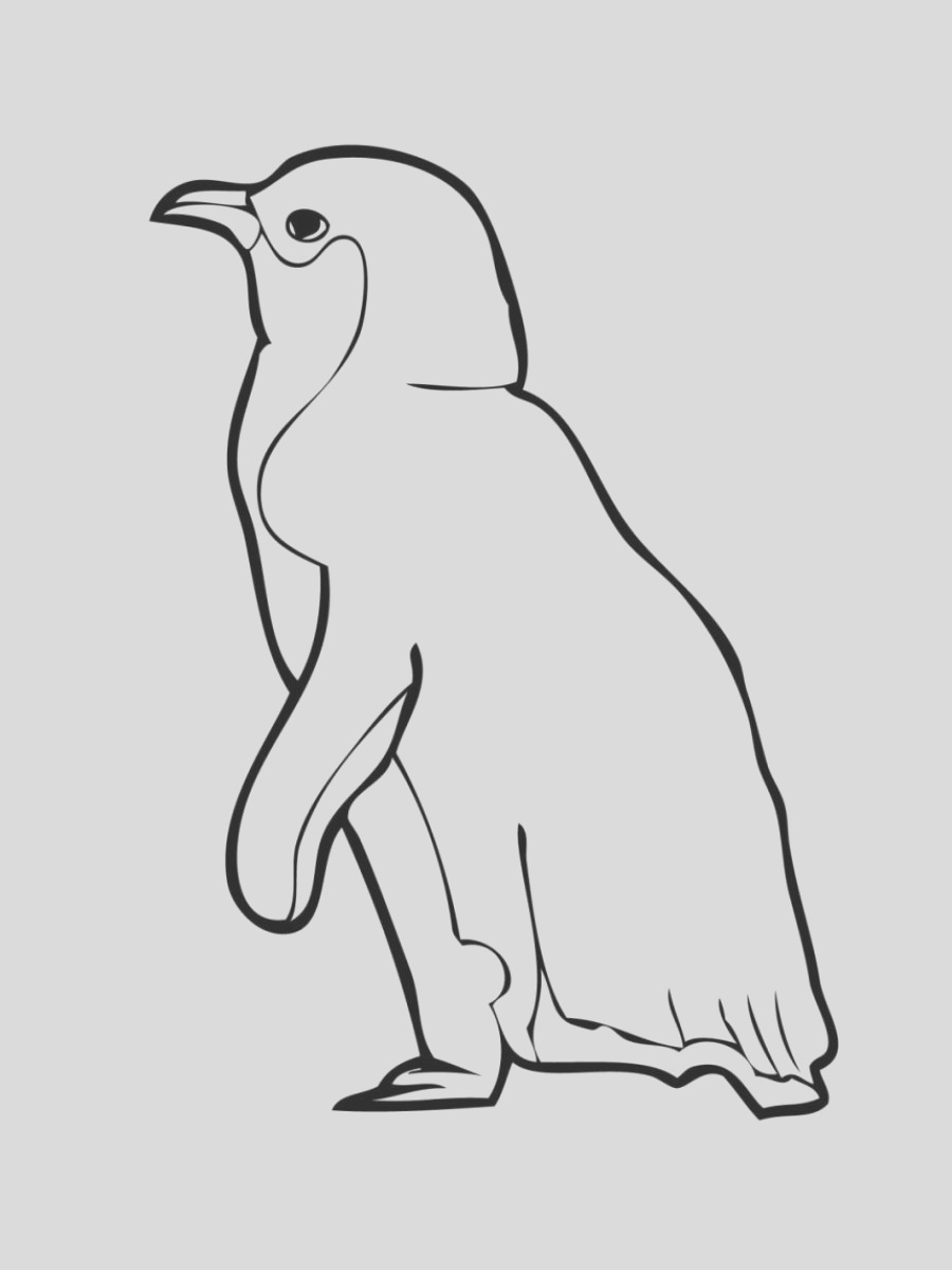 printable penguin pictures