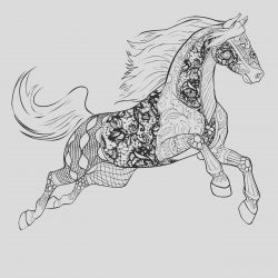 Adult Coloring Page Horse Luxury Horse Coloring Pages for Adults Best Coloring Pages for Kids