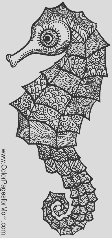 henna zentangle other drawings
