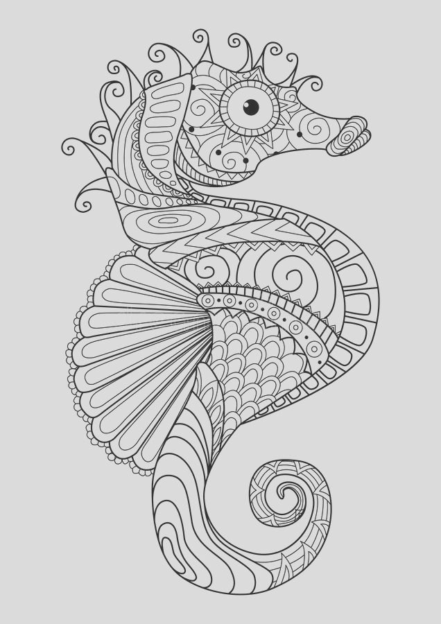 stock illustration hand drawn sea horse zentangle style coloring page t shirt design effect logo tattoo image