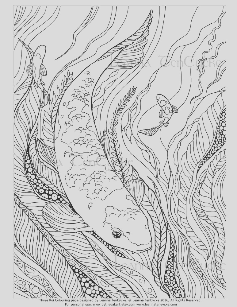 adult colouring page fish animals koi
