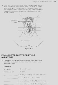 anatomy and physiology coloring workbook the reproductive system answer key 798 836