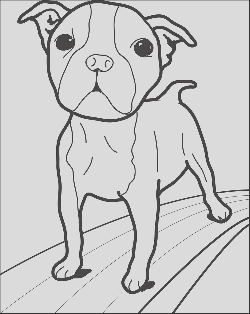 small dog walking on a path coloring page a4272