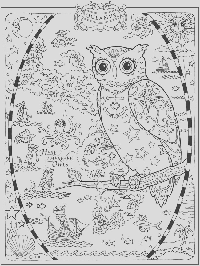owl coloring pages uil kleurplaten