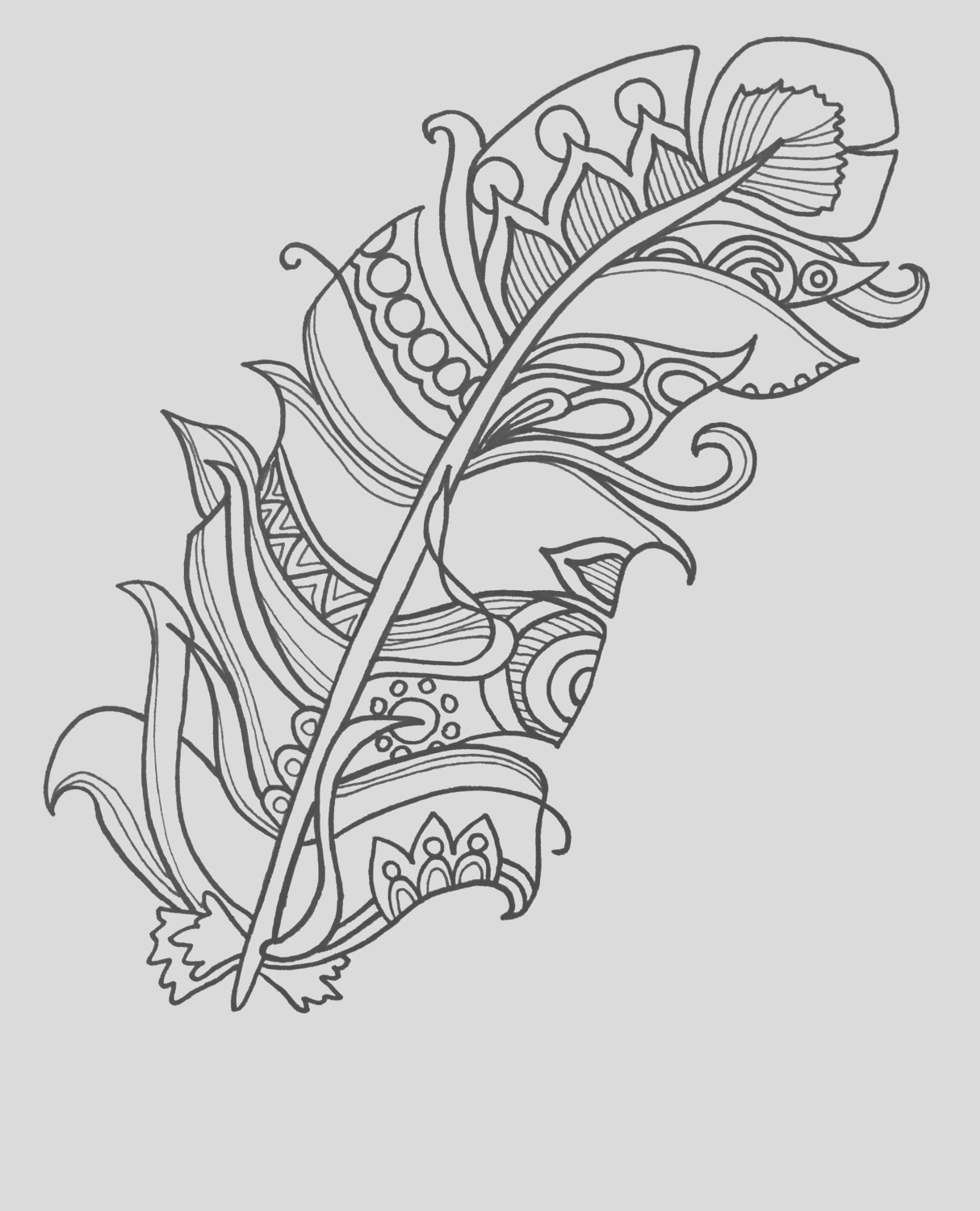 10 fun and funky feather coloringpages