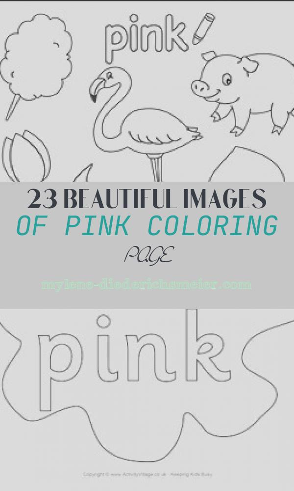 Pink Coloring Page Lovely Colors Resources