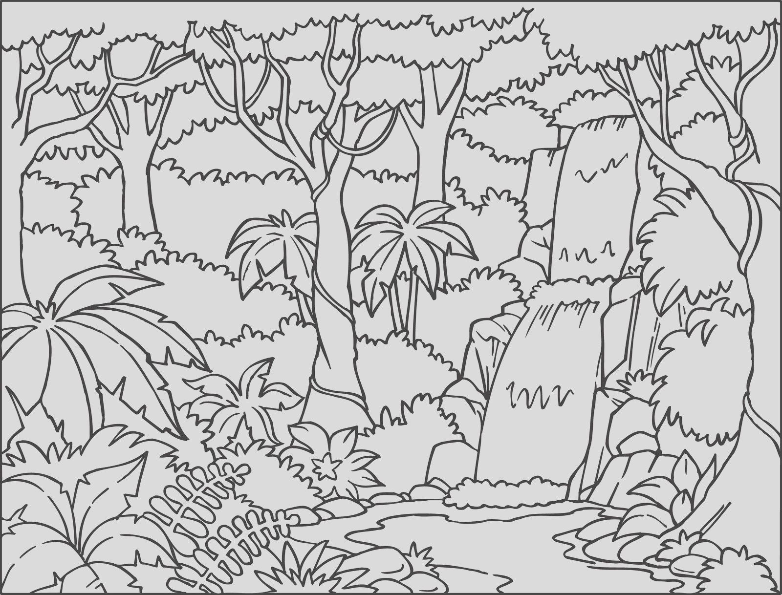 tropical rainforest coloring pages